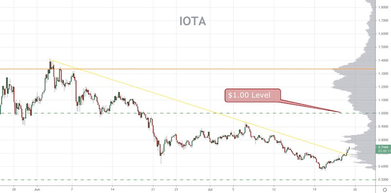 IOTA Price Forecast